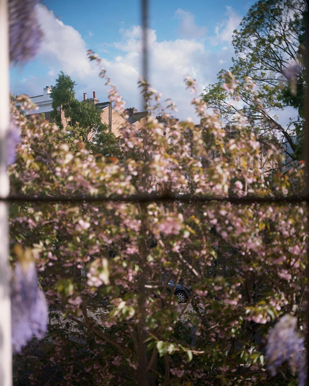Susanne's View. London.