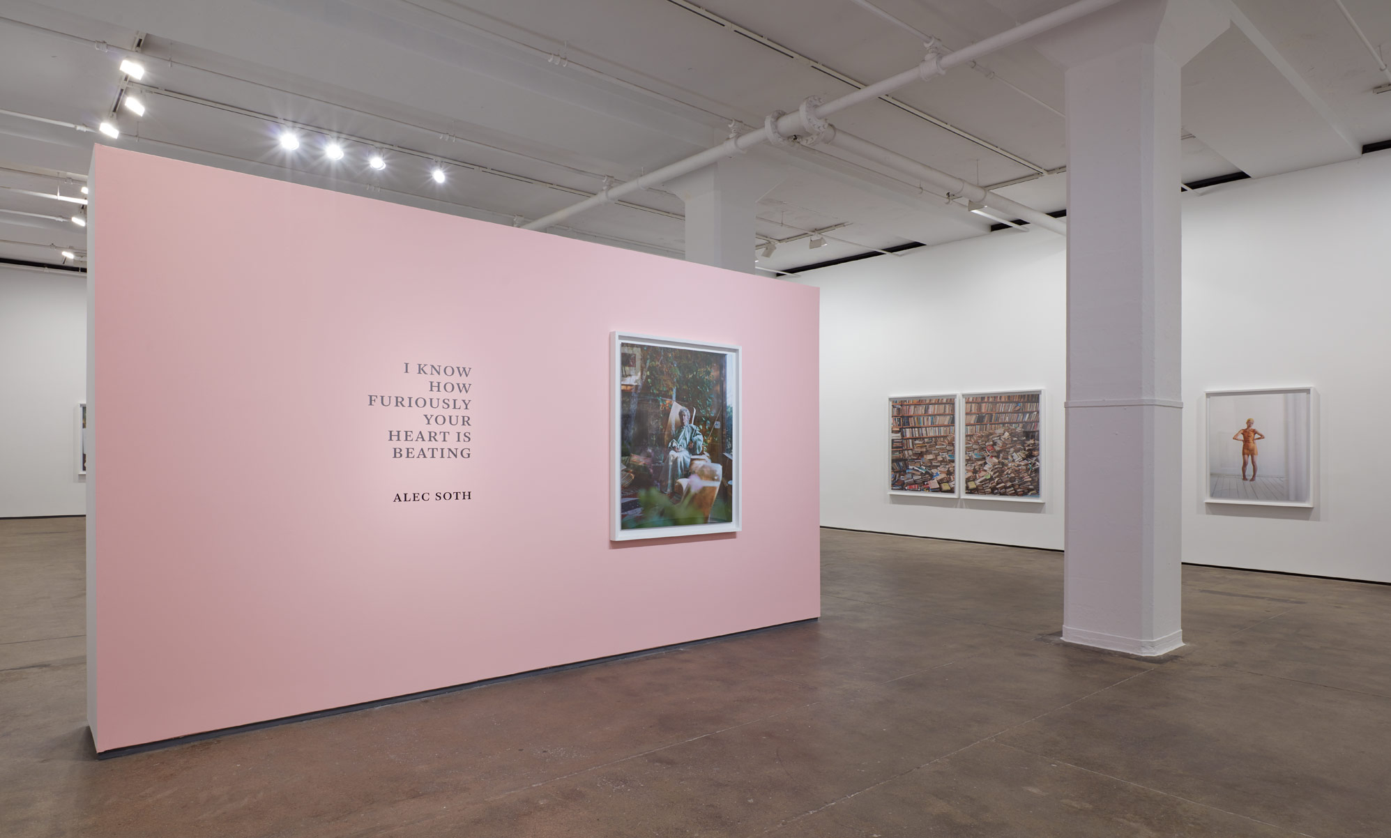 Installation view of Alec Soth: I Know How Furiously Your Heart Is Beating at Sean Kelly, New York March 21 - April 27, 2019 Photography: Jason Wyche, New York Courtesy: Sean Kelly, New York